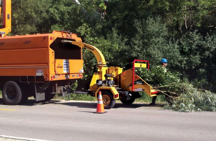Commercial Tree Services-Solana Beach CA Tree Trimming and Stump Grinding Services-We Offer Tree Trimming Services, Tree Removal, Tree Pruning, Tree Cutting, Residential and Commercial Tree Trimming Services, Storm Damage, Emergency Tree Removal, Land Clearing, Tree Companies, Tree Care Service, Stump Grinding, and we're the Best Tree Trimming Company Near You Guaranteed!