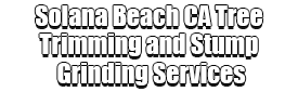 Solana Beach CA Tree Trimming and Stump Grinding Services