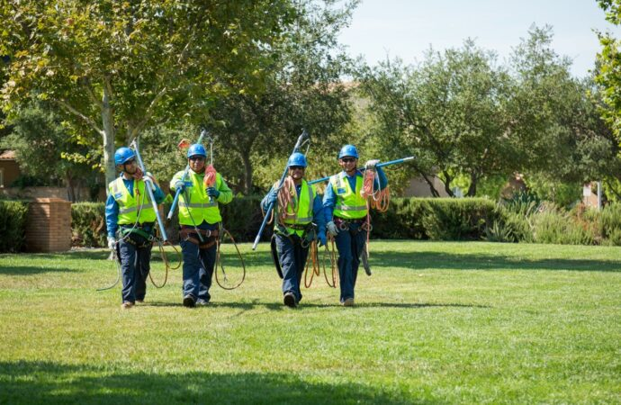 Torrey Pines-Solana Beach CA Tree Trimming and Stump Grinding Services-We Offer Tree Trimming Services, Tree Removal, Tree Pruning, Tree Cutting, Residential and Commercial Tree Trimming Services, Storm Damage, Emergency Tree Removal, Land Clearing, Tree Companies, Tree Care Service, Stump Grinding, and we're the Best Tree Trimming Company Near You Guaranteed!